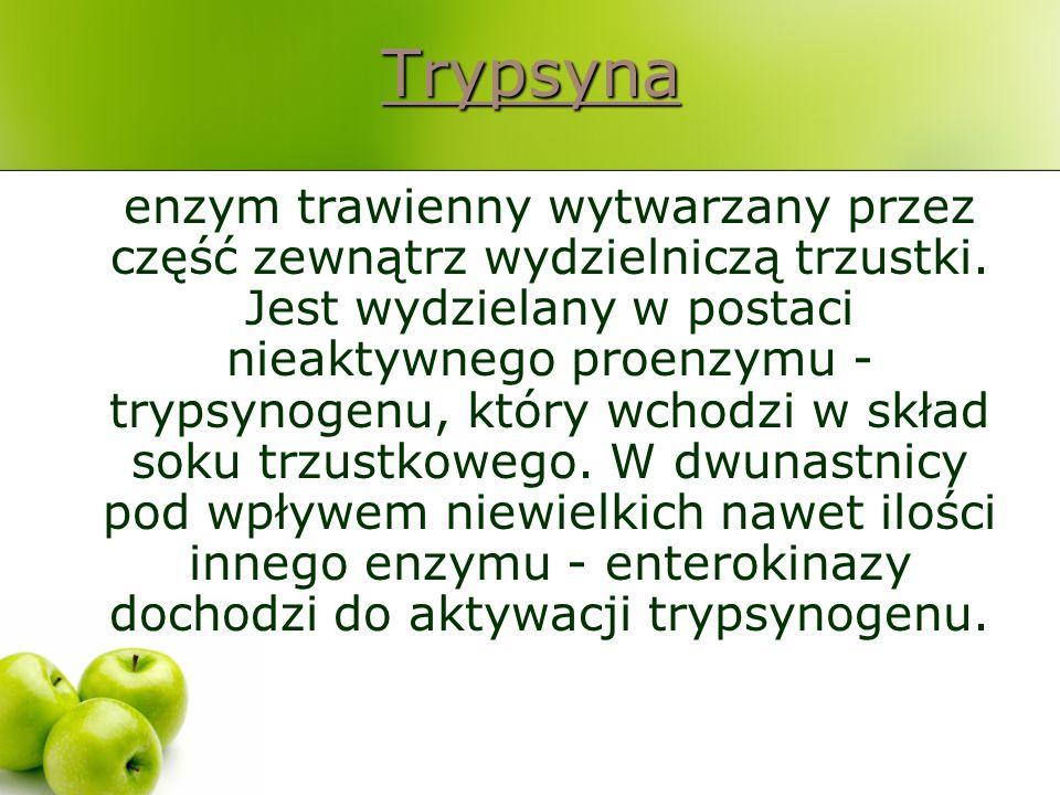 Trypsyna