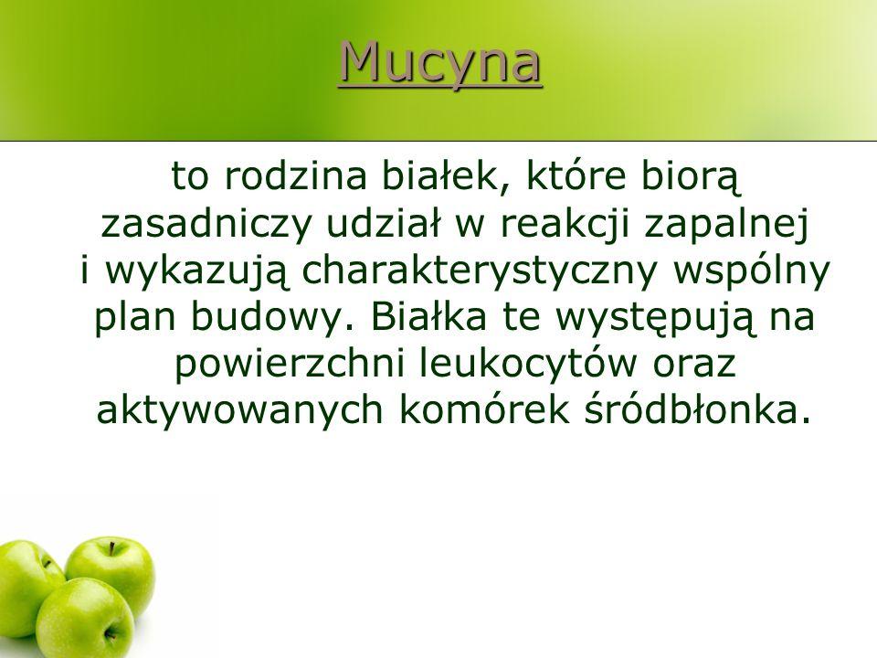 Mucyna