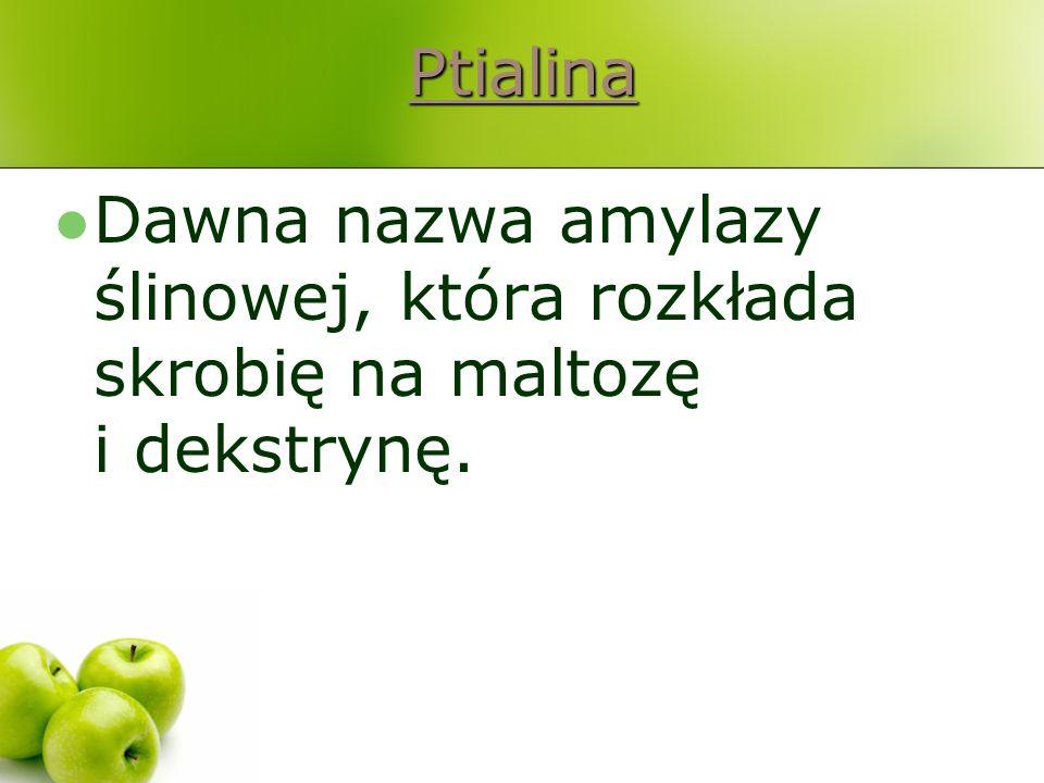 Ptialina Dawna nazwa amylazy ślinowej, która rozkłada skrobię na maltozę i dekstrynę.