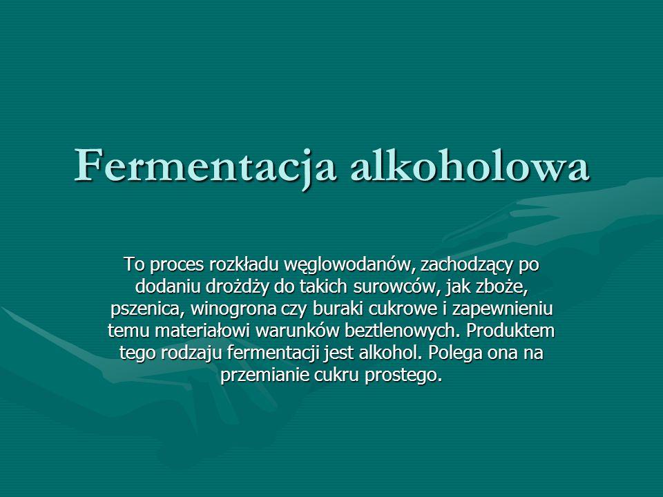Fermentacja alkoholowa