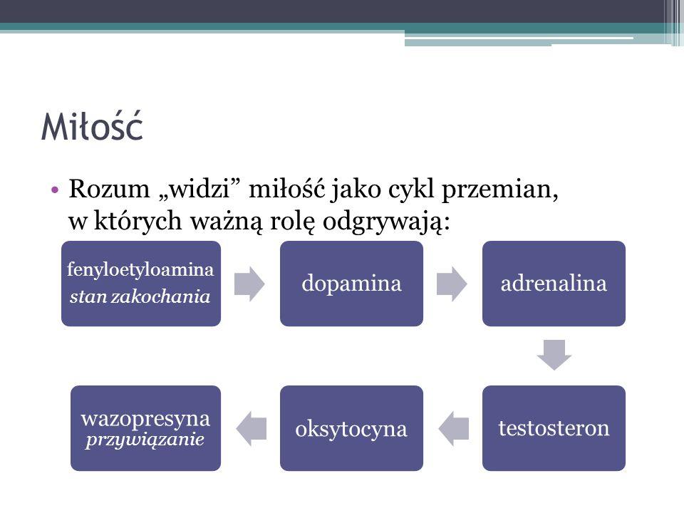 wazopresyna przywiązanie