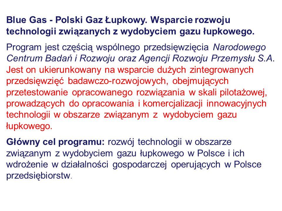 Blue Gas - Polski Gaz Łupkowy