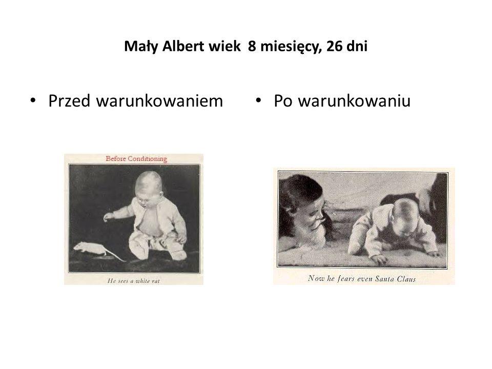 Mały Albert wiek 8 miesięcy, 26 dni