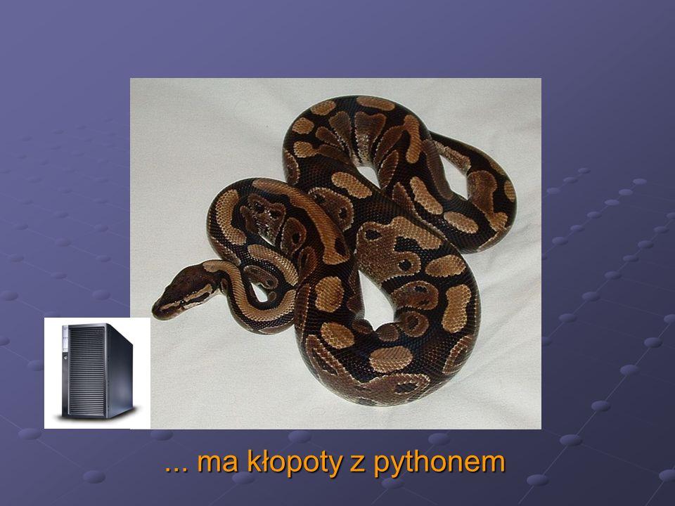 ... ma kłopoty z pythonem