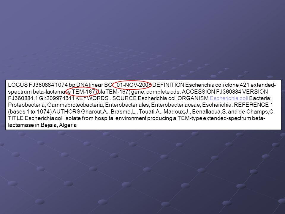 LOCUS FJ360884 1074 bp DNA linear BCT 01-NOV-2008 DEFINITION Escherichia coli clone 421 extended-spectrum beta-lactamase TEM-167 (blaTEM-167) gene, complete cds.