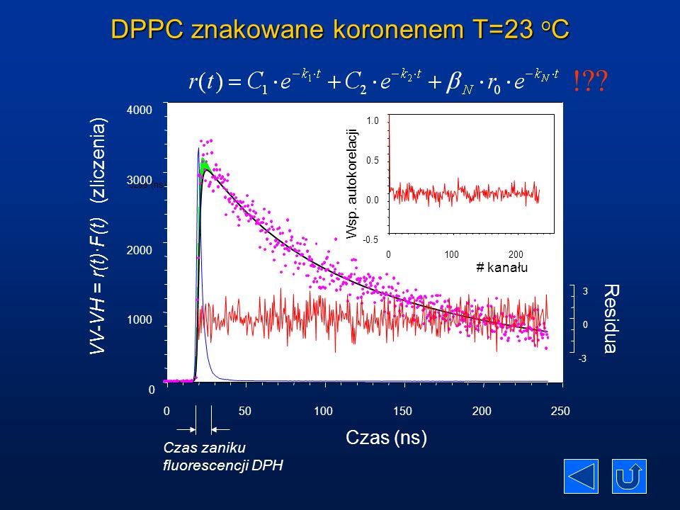 DPPC znakowane koronenem T=23 oC