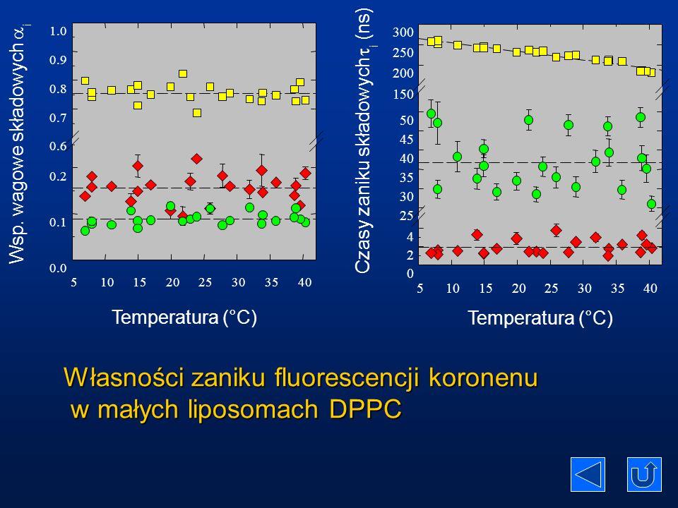 Własności zaniku fluorescencji koronenu w małych liposomach DPPC