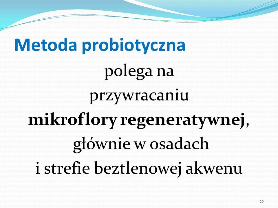 Metoda probiotyczna polega na przywracaniu mikroflory regeneratywnej,