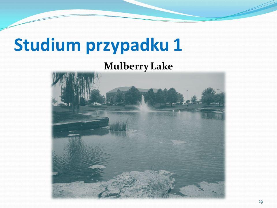 Studium przypadku 1 Mulberry Lake