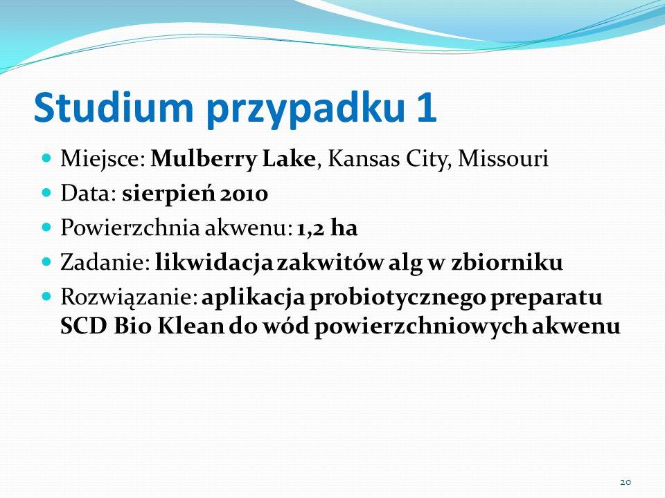 Studium przypadku 1 Miejsce: Mulberry Lake, Kansas City, Missouri