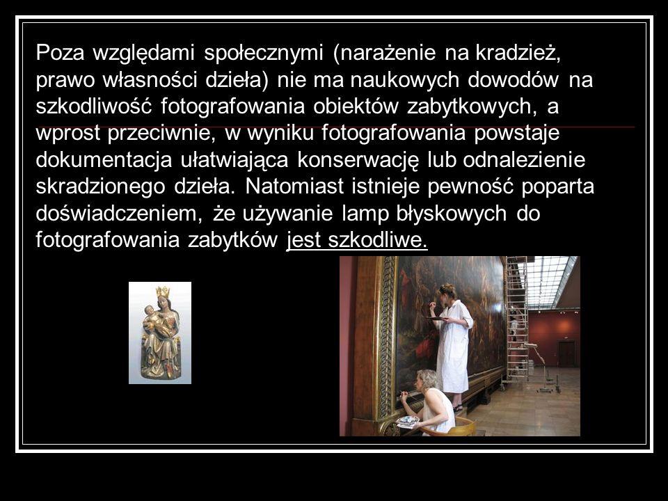 Poza względami społecznymi (narażenie na kradzież, prawo własności dzieła) nie ma naukowych dowodów na szkodliwość fotografowania obiektów zabytkowych, a wprost przeciwnie, w wyniku fotografowania powstaje dokumentacja ułatwiająca konserwację lub odnalezienie skradzionego dzieła.
