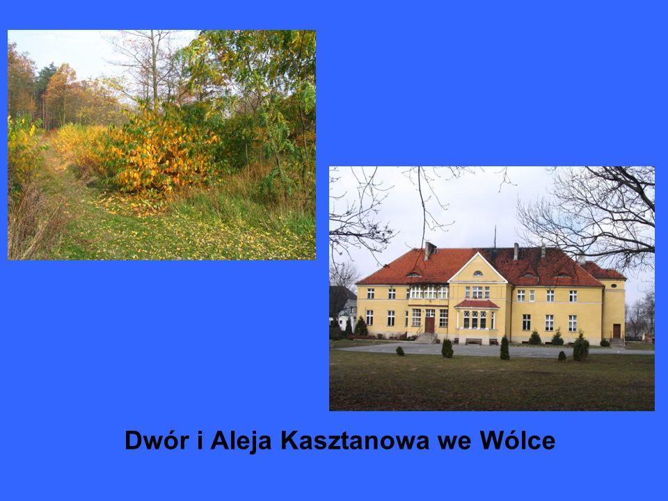 Dwór i Aleja Kasztanowa we Wólce