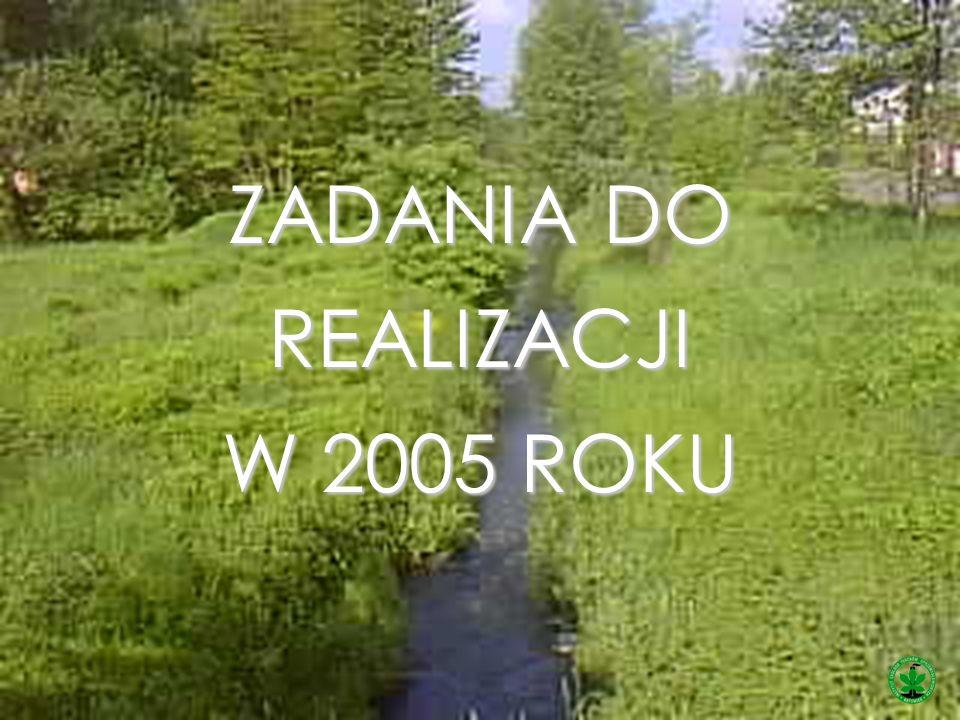 ZADANIA DO REALIZACJI W 2005 ROKU