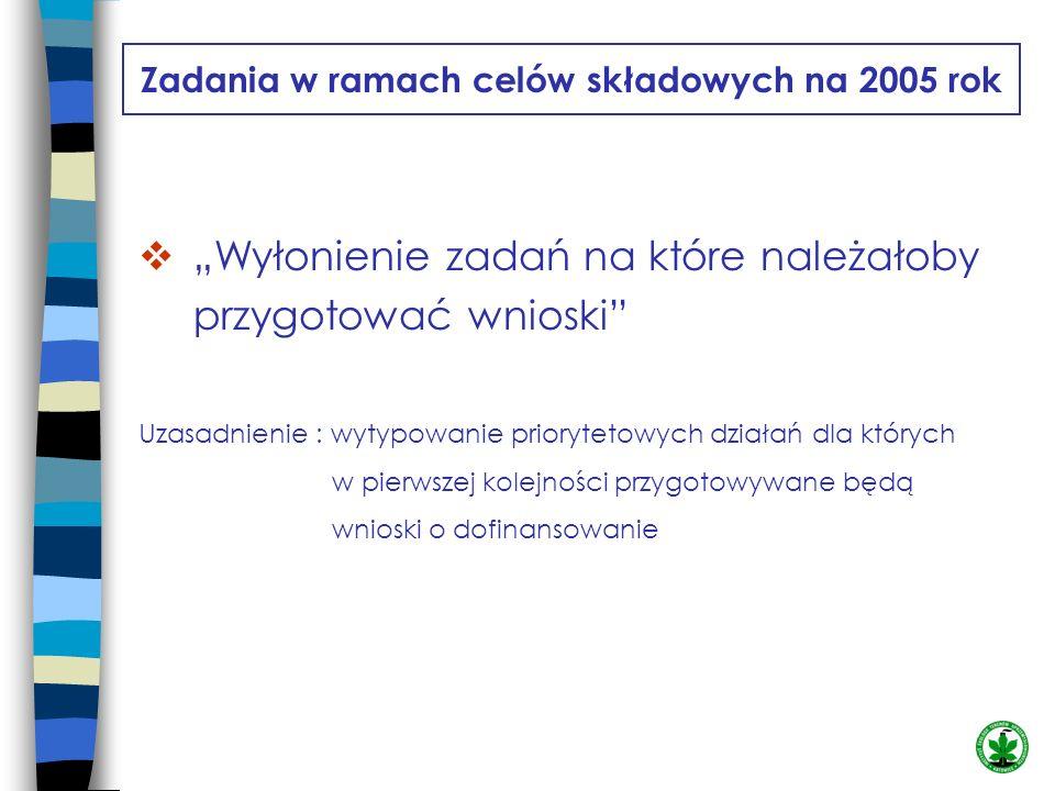 Zadania w ramach celów składowych na 2005 rok