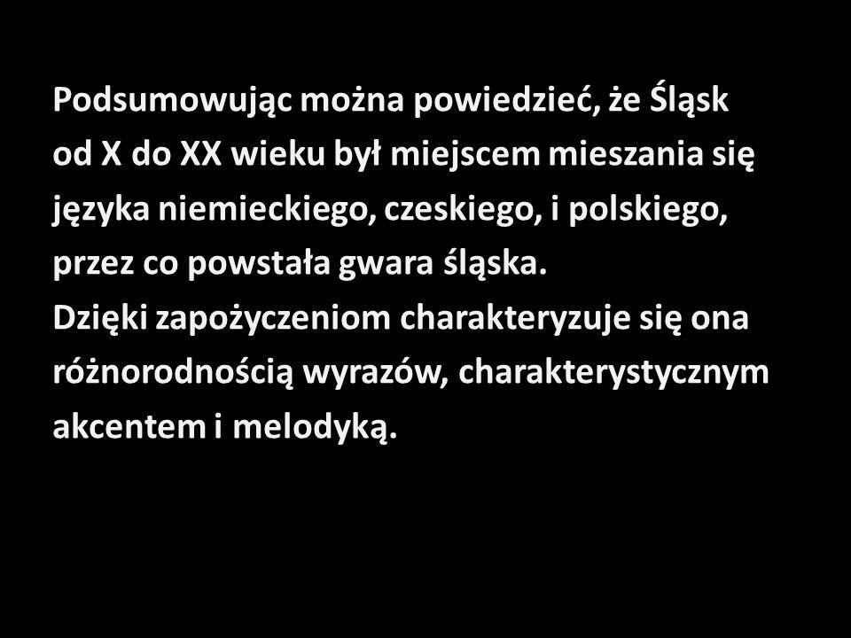 Podsumowując można powiedzieć, że Śląsk od X do XX wieku był miejscem mieszania się języka niemieckiego, czeskiego, i polskiego, przez co powstała gwara śląska.
