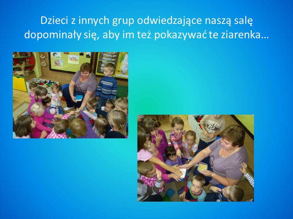 Dzieci z innych grup odwiedzające naszą salę dopominały się, aby im też pokazywać te ziarenka…