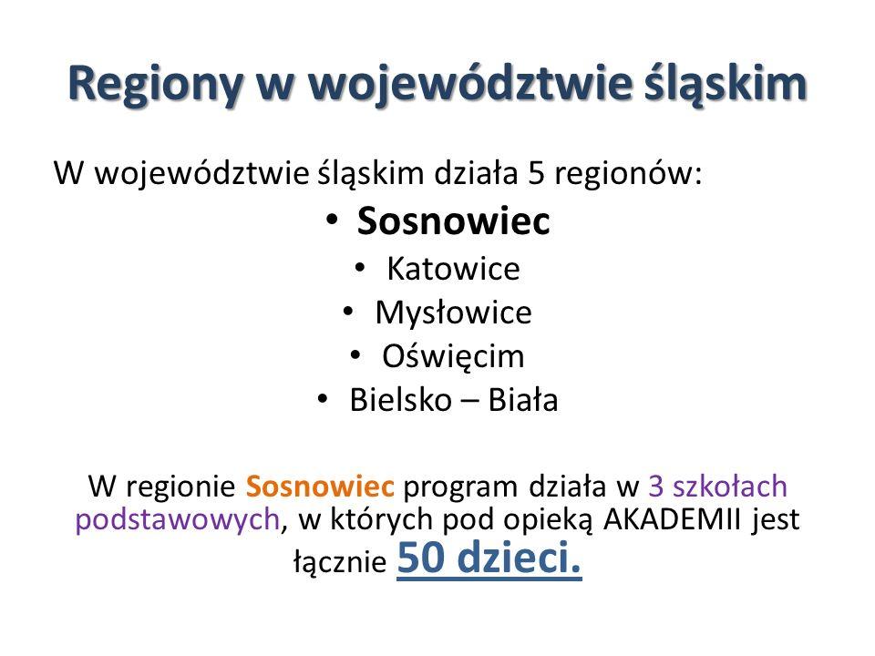 Regiony w województwie śląskim