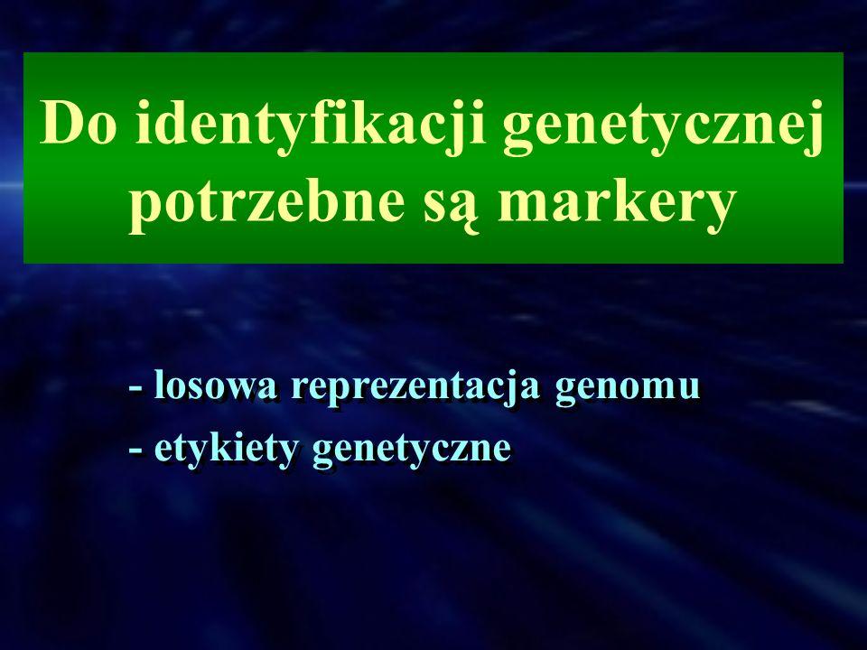 Do identyfikacji genetycznej potrzebne są markery