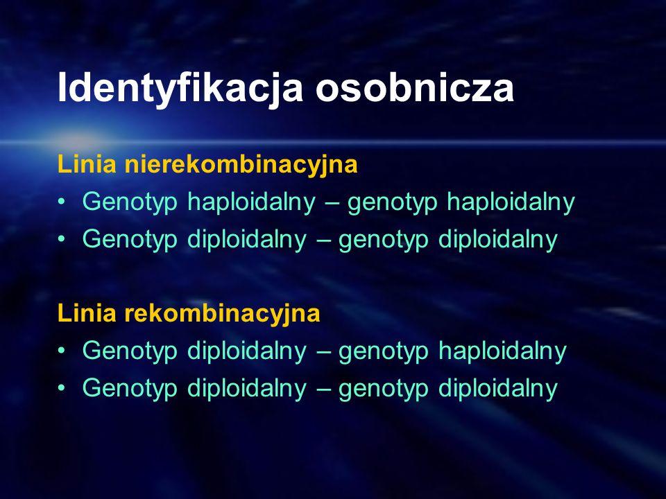 Identyfikacja osobnicza