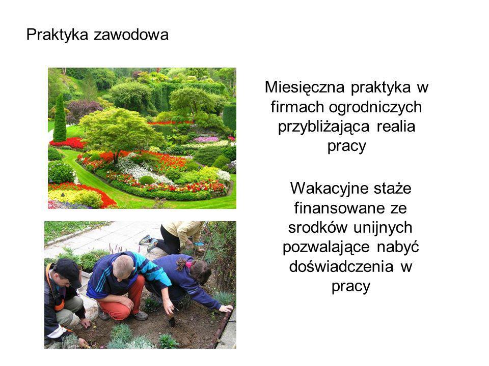Miesięczna praktyka w firmach ogrodniczych przybliżająca realia pracy