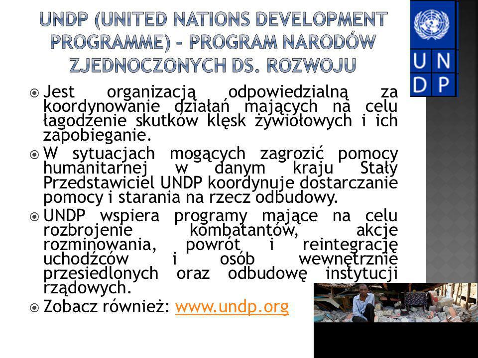 UNDP (United Nations Development Programme) - Program Narodów Zjednoczonych ds. Rozwoju