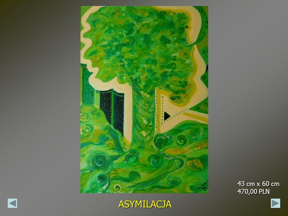43 cm x 60 cm 470,00 PLN ASYMILACJA