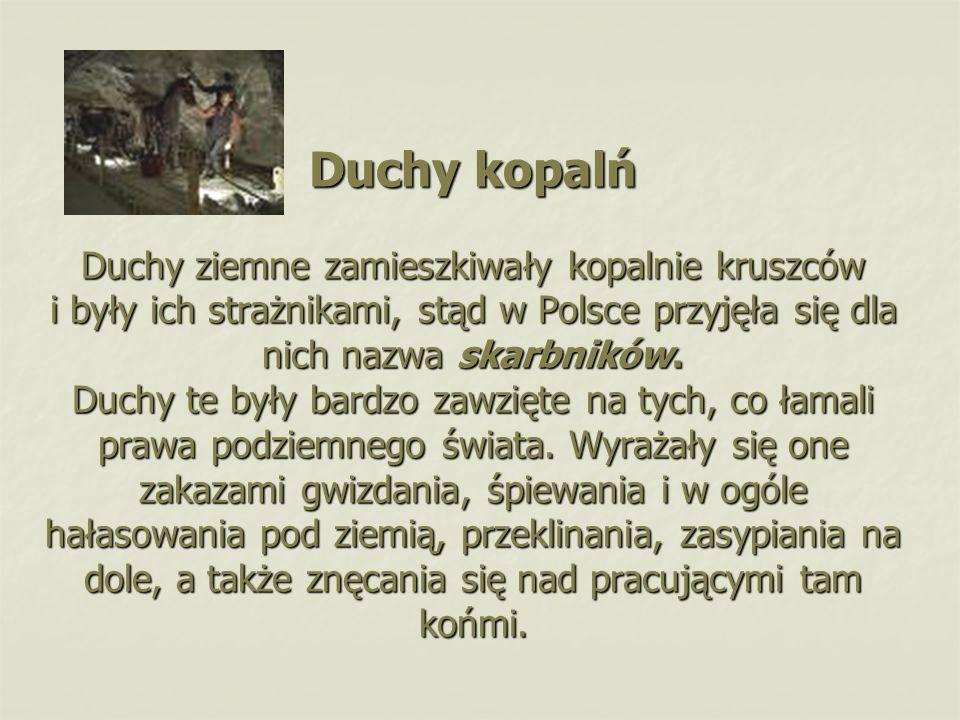 Duchy kopalń Duchy ziemne zamieszkiwały kopalnie kruszców i były ich strażnikami, stąd w Polsce przyjęła się dla nich nazwa skarbników.