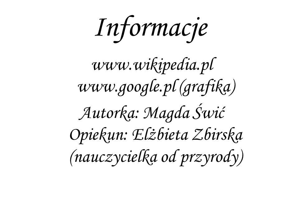 Informacje www.wikipedia.pl www.google.pl (grafika) Autorka: Magda Świć Opiekun: Elżbieta Zbirska (nauczycielka od przyrody)