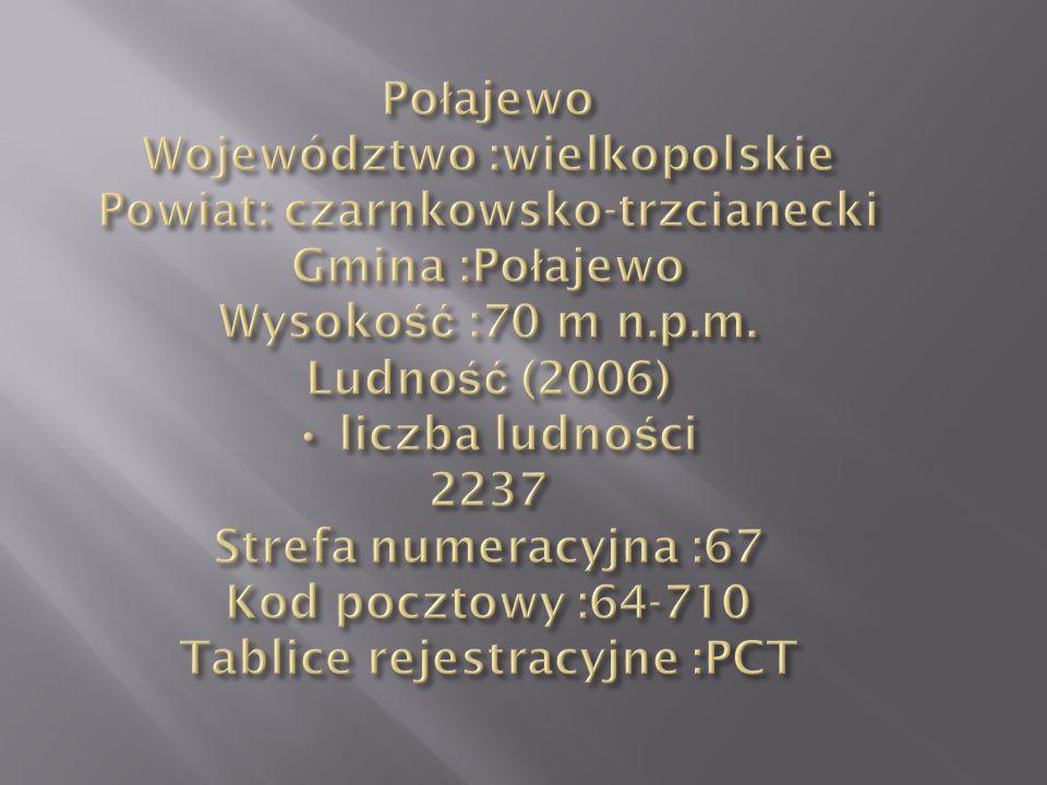 Połajewo Województwo :wielkopolskie Powiat: czarnkowsko-trzcianecki Gmina :Połajewo Wysokość :70 m n.p.m.