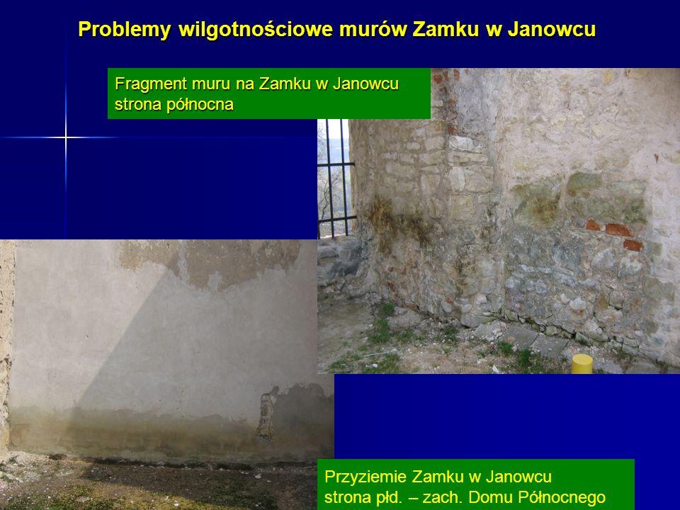 Problemy wilgotnościowe murów Zamku w Janowcu