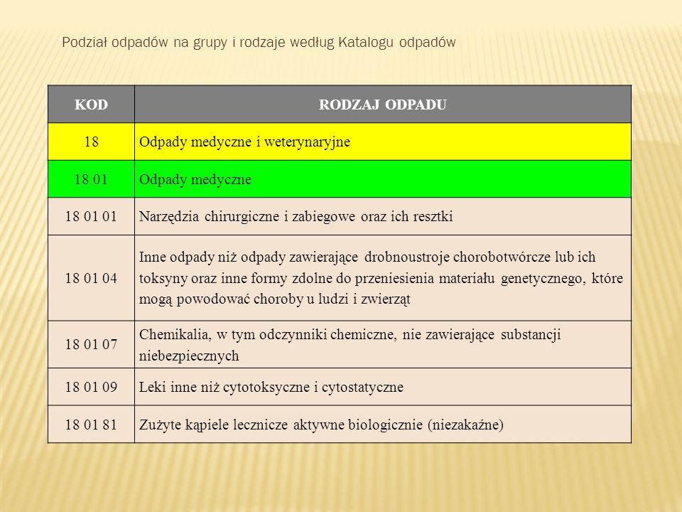 Podział odpadów na grupy i rodzaje według Katalogu odpadów