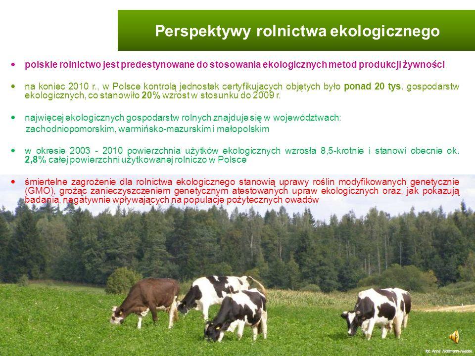 Perspektywy rolnictwa ekologicznego