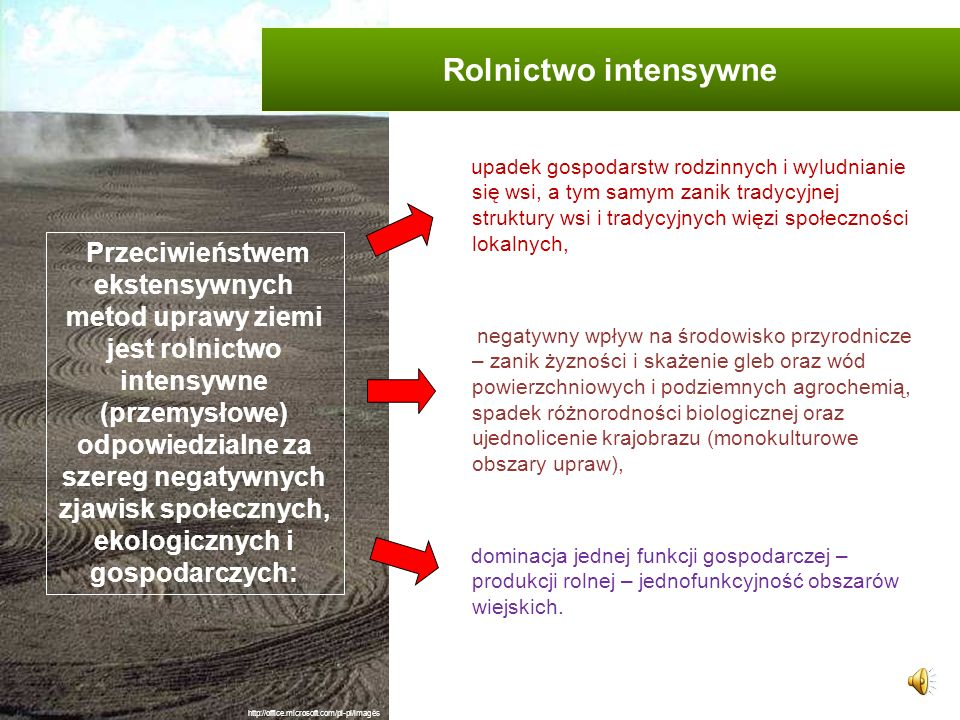 Rolnictwo intensywne
