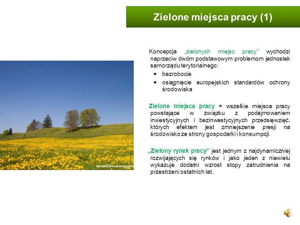 Zielone miejsca pracy (1)