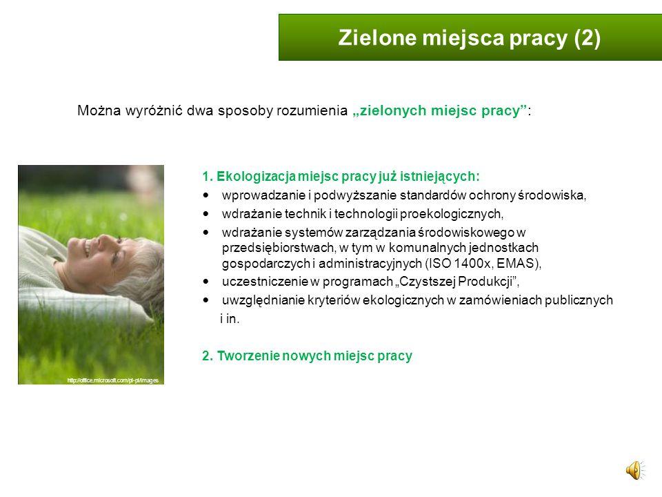 Zielone miejsca pracy (2)