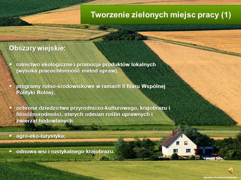 Tworzenie zielonych miejsc pracy (1)