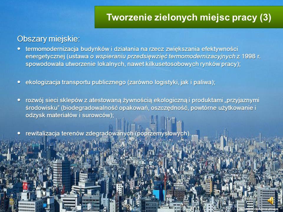 Tworzenie zielonych miejsc pracy (3)