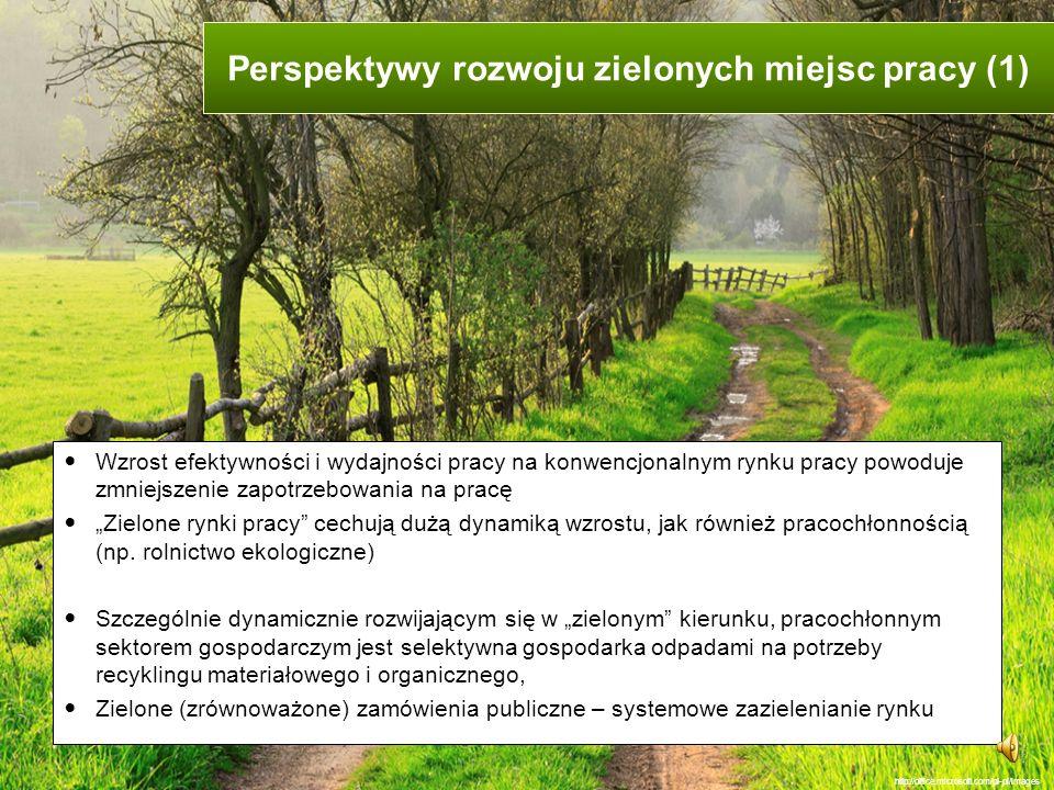 Perspektywy rozwoju zielonych miejsc pracy (1)