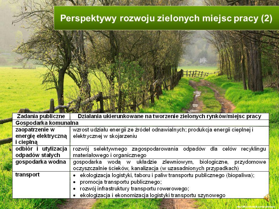 Perspektywy rozwoju zielonych miejsc pracy (2)