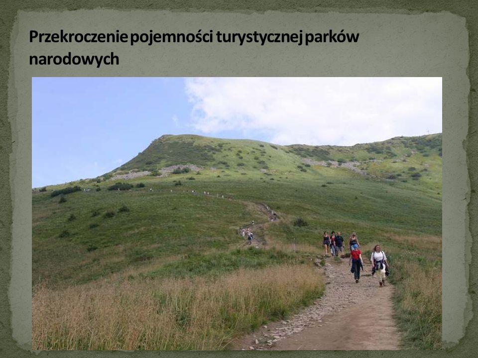 Przekroczenie pojemności turystycznej parków narodowych