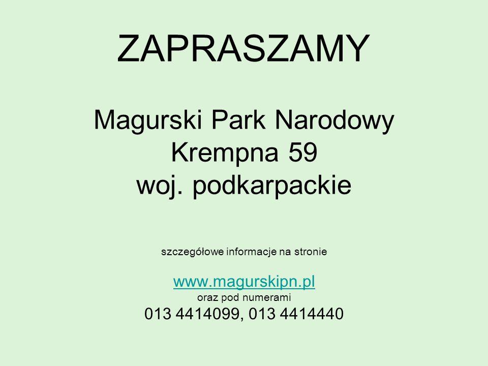 ZAPRASZAMY Magurski Park Narodowy Krempna 59 woj. podkarpackie