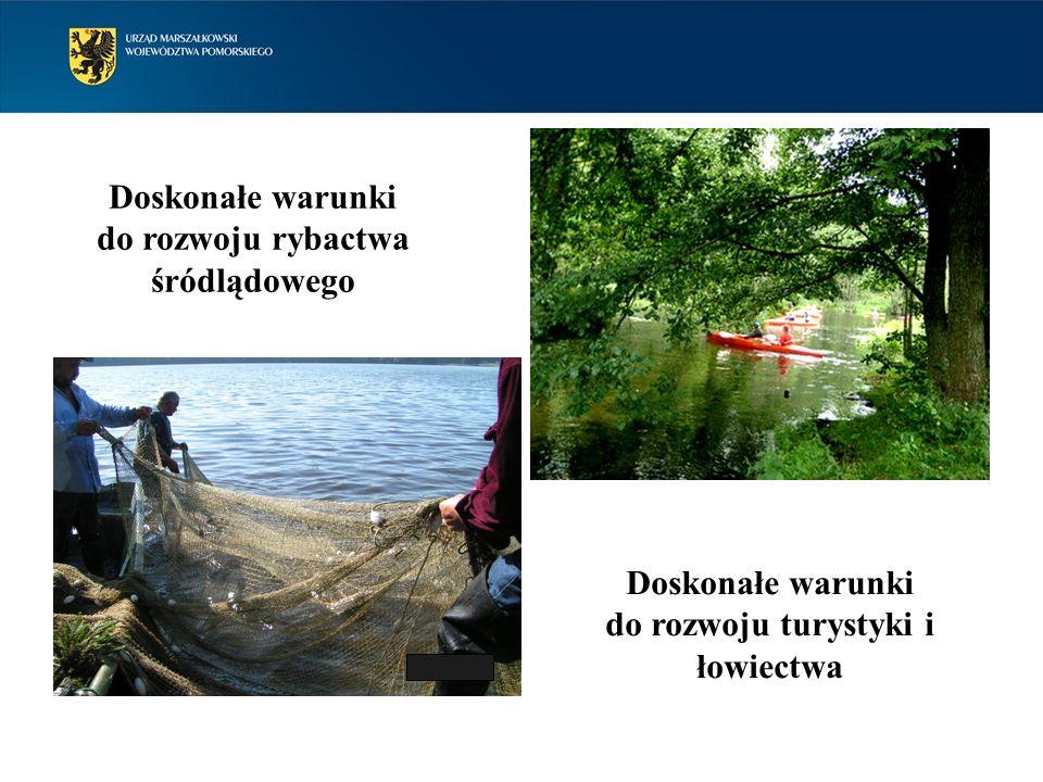 Doskonałe warunki do rozwoju rybactwa śródlądowego