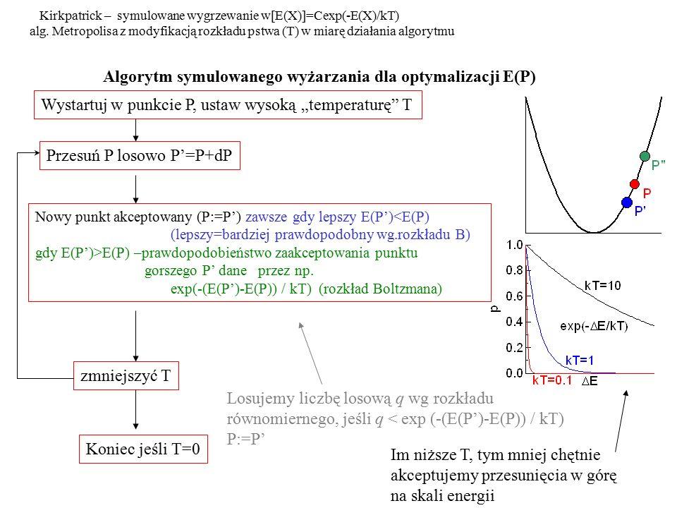 Algorytm symulowanego wyżarzania dla optymalizacji E(P)