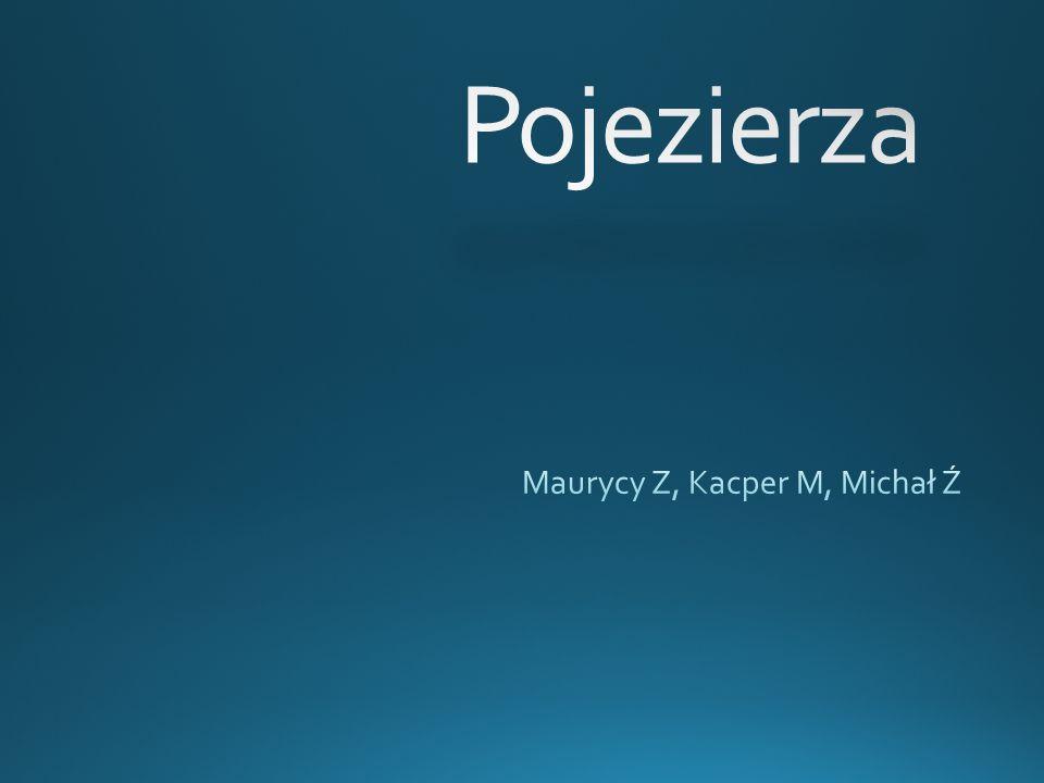 Maurycy Z, Kacper M, Michał Ź