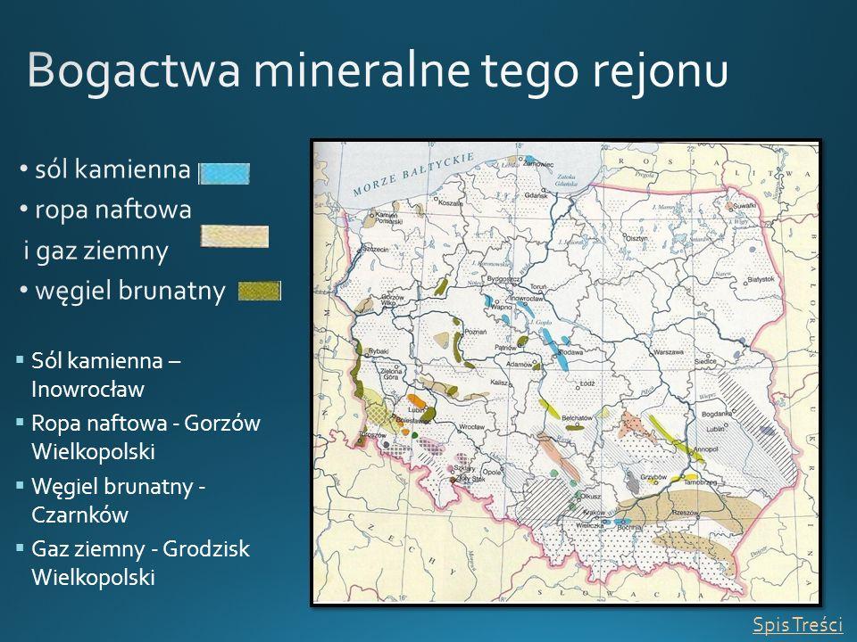 Bogactwa mineralne tego rejonu