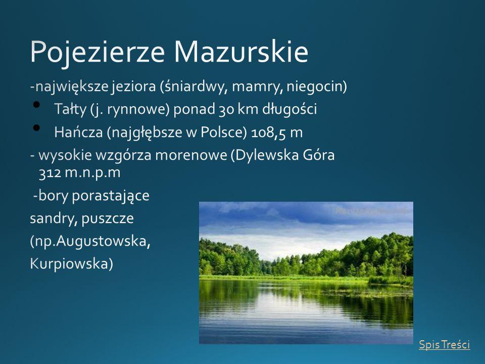 Pojezierze Mazurskie -największe jeziora (śniardwy, mamry, niegocin)
