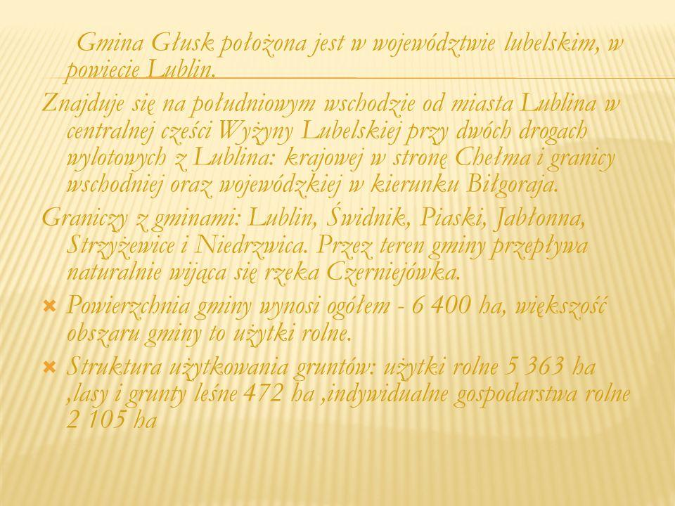 Gmina Głusk położona jest w województwie lubelskim, w powiecie Lublin.