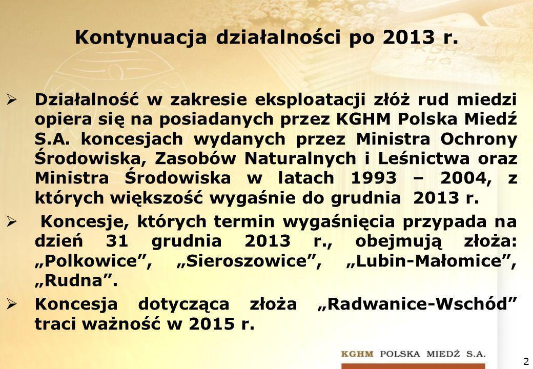 Kontynuacja działalności po 2013 r.