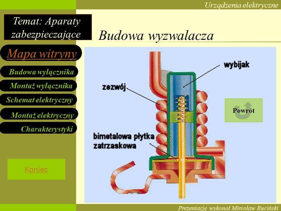 Budowa wyzwalacza Powrót Koniec Prezentację wykonał Mirosław Ruciński