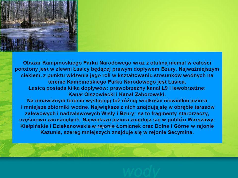 Obszar Kampinoskiego Parku Narodowego wraz z otuliną niemal w całości położony jest w zlewni Łasicy będącej prawym dopływem Bzury. Najważniejszym ciekiem, z punktu widzenia jego roli w kształtowaniu stosunków wodnych na terenie Kampinoskiego Parku Narodowego jest Łasica. Łasica posiada kilka dopływów: prawobrzeżny kanał Ł9 i lewobrzeżne: Kanał Olszowiecki i Kanał Zaborowski. Na omawianym terenie występują też różnej wielkości niewielkie jeziora i mniejsze zbiorniki wodne. Największe z nich znajdują się w obrębie tarasów zalewowych i nadzalewowych Wisły i Bzury; są to fragmenty starorzeczy, częściowo zarośniętych. Największe jeziora znajdują się w pobliżu Warszawy: Kiełpińskie i Dziekanowskie w rejonie Łomianek oraz Dolne i Górne w rejonie Kazunia, szereg mniejszych znajduje się w rejonie Secymina.